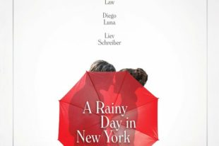 A Rainy Day in New York - Woody Allen